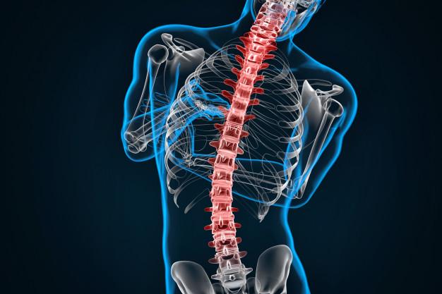 آلام الظهر : أسباب , أعراض , تشخيص وعلاج