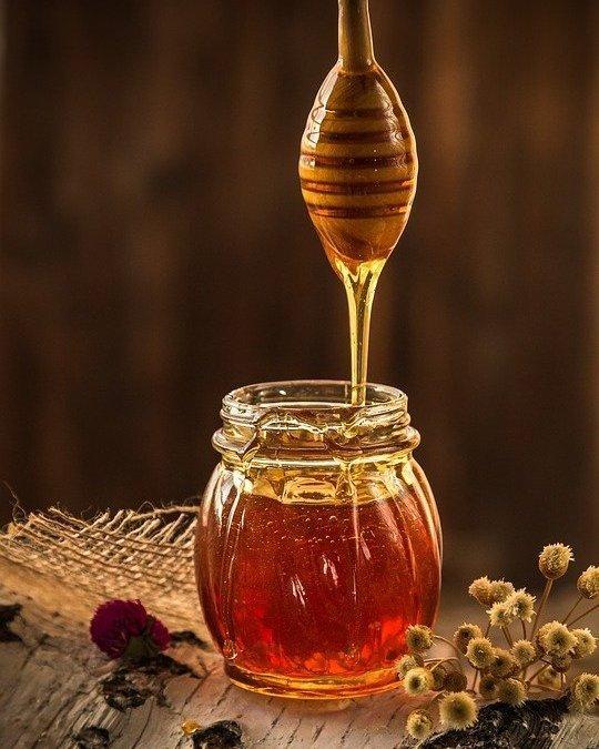 النحل تركيبه الكيميائي – أهميته وأنواعه مميزاته العلاجية